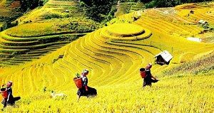 SAPA BY TRAIN 3 DAYS 4 NIGHTS  (1 NIGHT IN  VILLAGE, 1 NIGHT IN HOTEL)