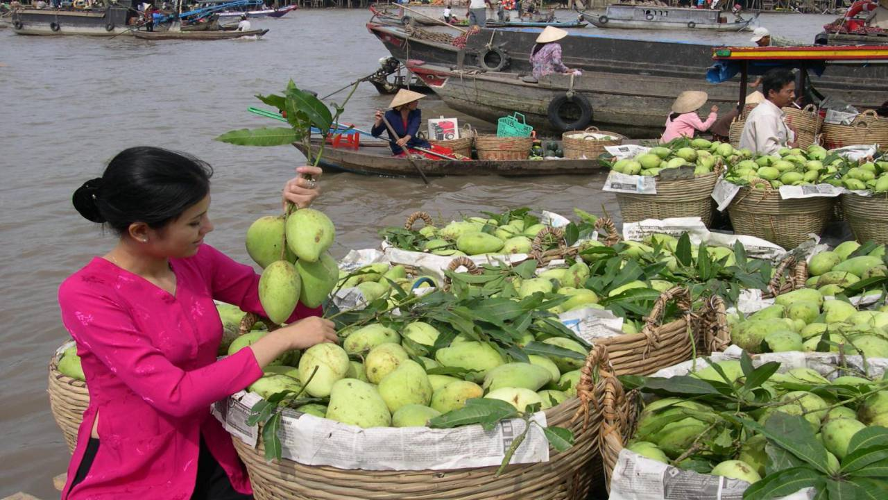 Day tour - Mekong delta tour – 1 day